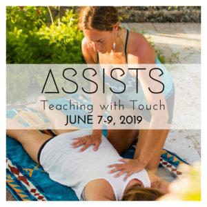 YTT 200 hour, yoga teacher training, hudson valley, kingston, ny, modules